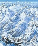 Les plans des pistes 2e ED: Les domaines skiables de France dessinés par Pierre Novat