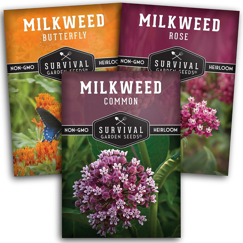 Survival Garden Seeds Milkweed Collection Seed Vault - Butterfly Milkweed, Common Milkweed, and Rose (Swamp) Milkweed for Monarchs - Non-GMO Heirloom Seeds for Planting & Growing