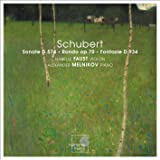 Schubert: Violin Sonata, D.574 / Rondo, D.895