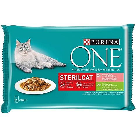 Purina One filettini (Salsa para El Gato sterilizzato, con salmón ...