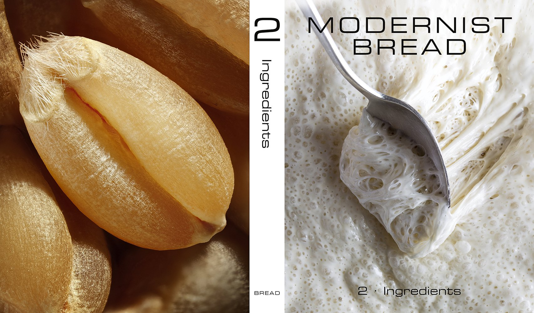modernist bread the art and science pdf download