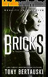 Bricks: A Technothriller (Halfskin Book 3)