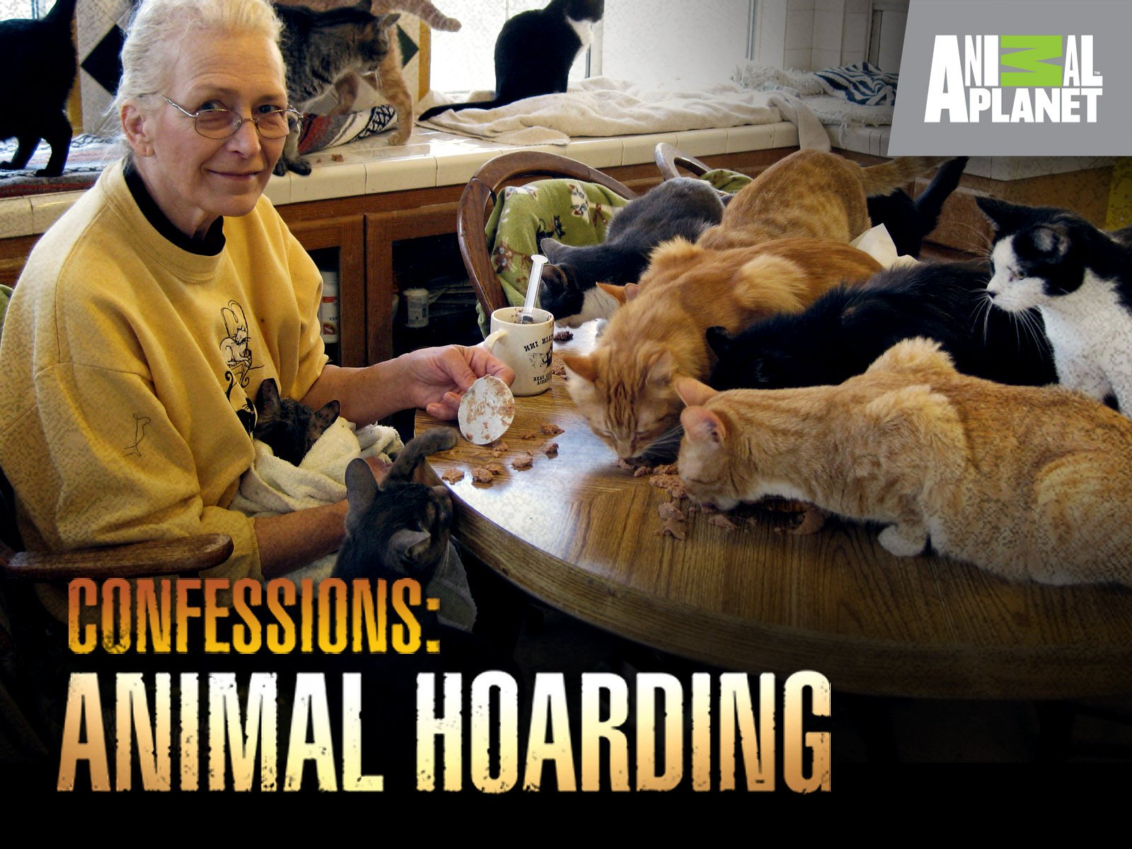 watch americas animal hoarder horror at the zoo