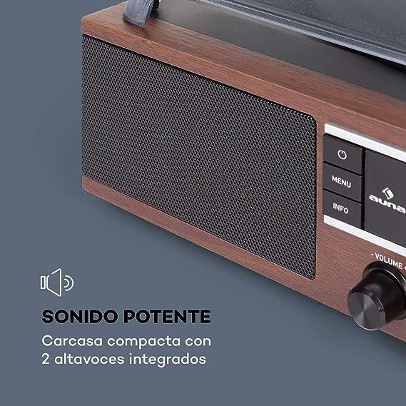 auna TT-138 Dab Tocadiscos - Sintonizador de Radio Dab+/FM, 2 ...