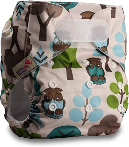 Pattern 1 Fastener: Hook-Loop with 1 Bamboo Insert Littles /& Bloomz Reusable Pocket Cloth Nappy Set of 1