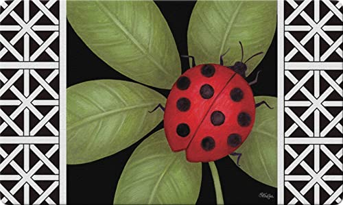 Toland Home Garden Ladybug 18 x 30 Inch Decorative Floor Mat Leaf Animal Lattice Doormat