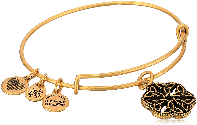 Alex and Ani Endless Knot III Rafaelian Gold Bangle Bracelet