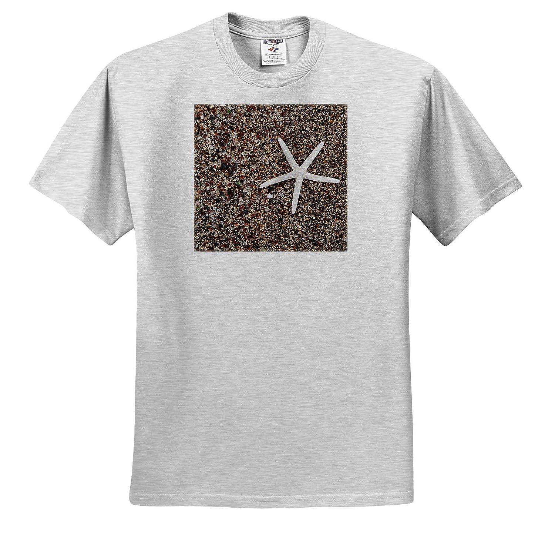 Starfish Skeleton on Glass Beach Kauai Hawaii 3dRose Danita Delimont ts/_314787 Seashells USA - Adult T-Shirt XL
