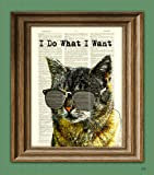 Amazon Price History for:I Do What I Want cat illustration beautifully upcycled dictionary page book art print