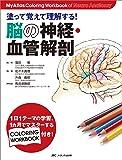 塗って覚えて理解する!脳の神経・血管解剖