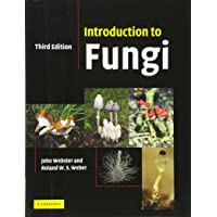 Introduction to Fungi