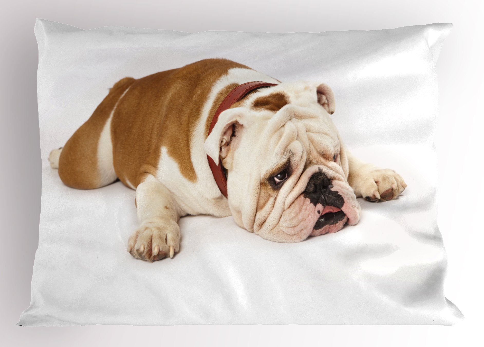 Ambesonne English Bulldog Pillow Sham, Sad and Tired Bulldog Laying Down European Pure Breed Animal Photography, Decorative Standard King Size Printed Pillowcase, 36 X 20 inches, Cream Brown