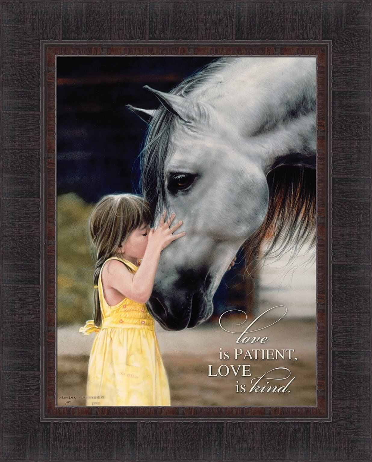 Love is Patient Love is Kind by Lesley Harrison 17x21 Girl Kissing Horse Kiss Scripture Religious Bible Verse Framed Art Print Wall Décor Picture
