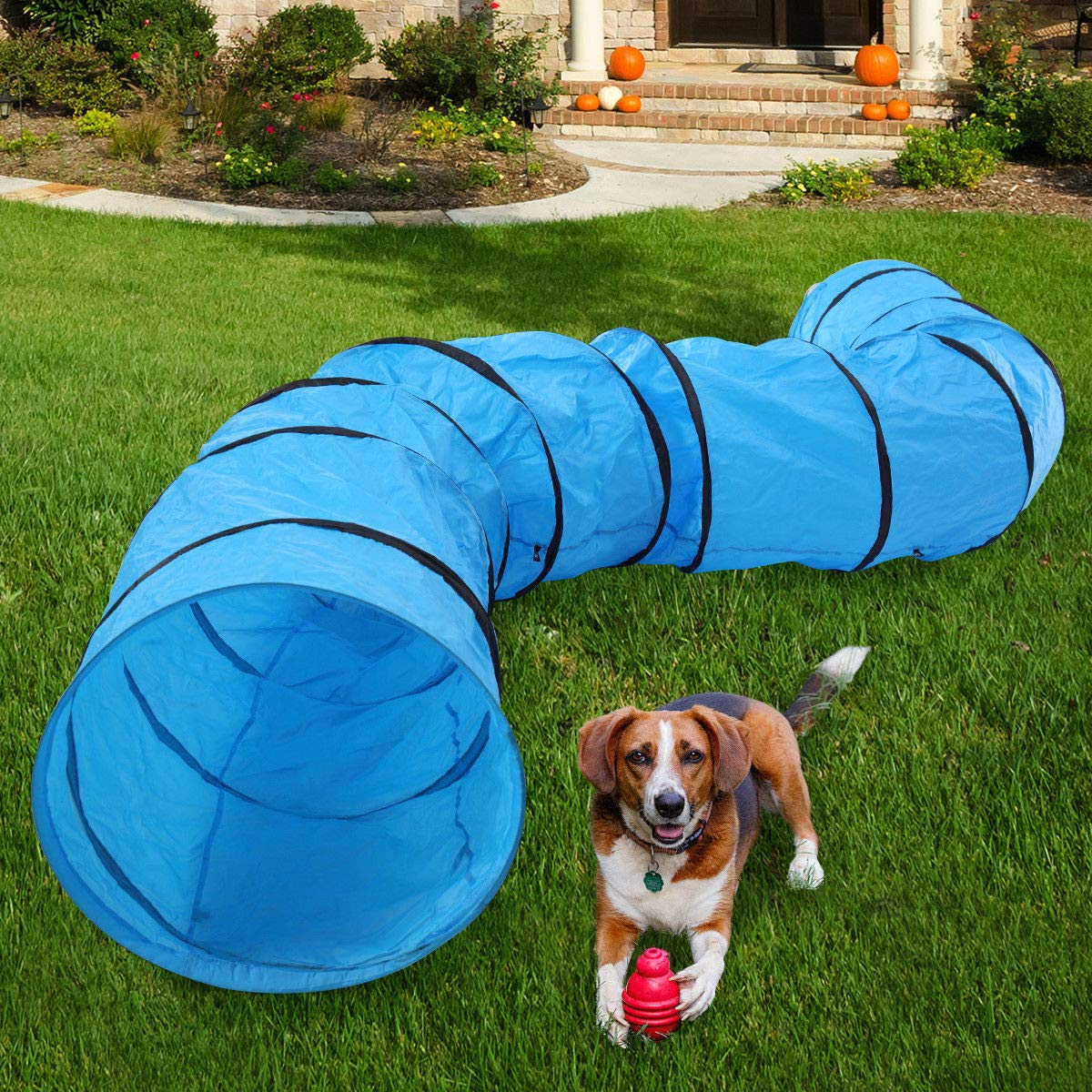 Thegreatshopman 16.4 Ft Long Dog&Cat Agility Training Tunnel w/Carrying Bag by Thegreatshopman
