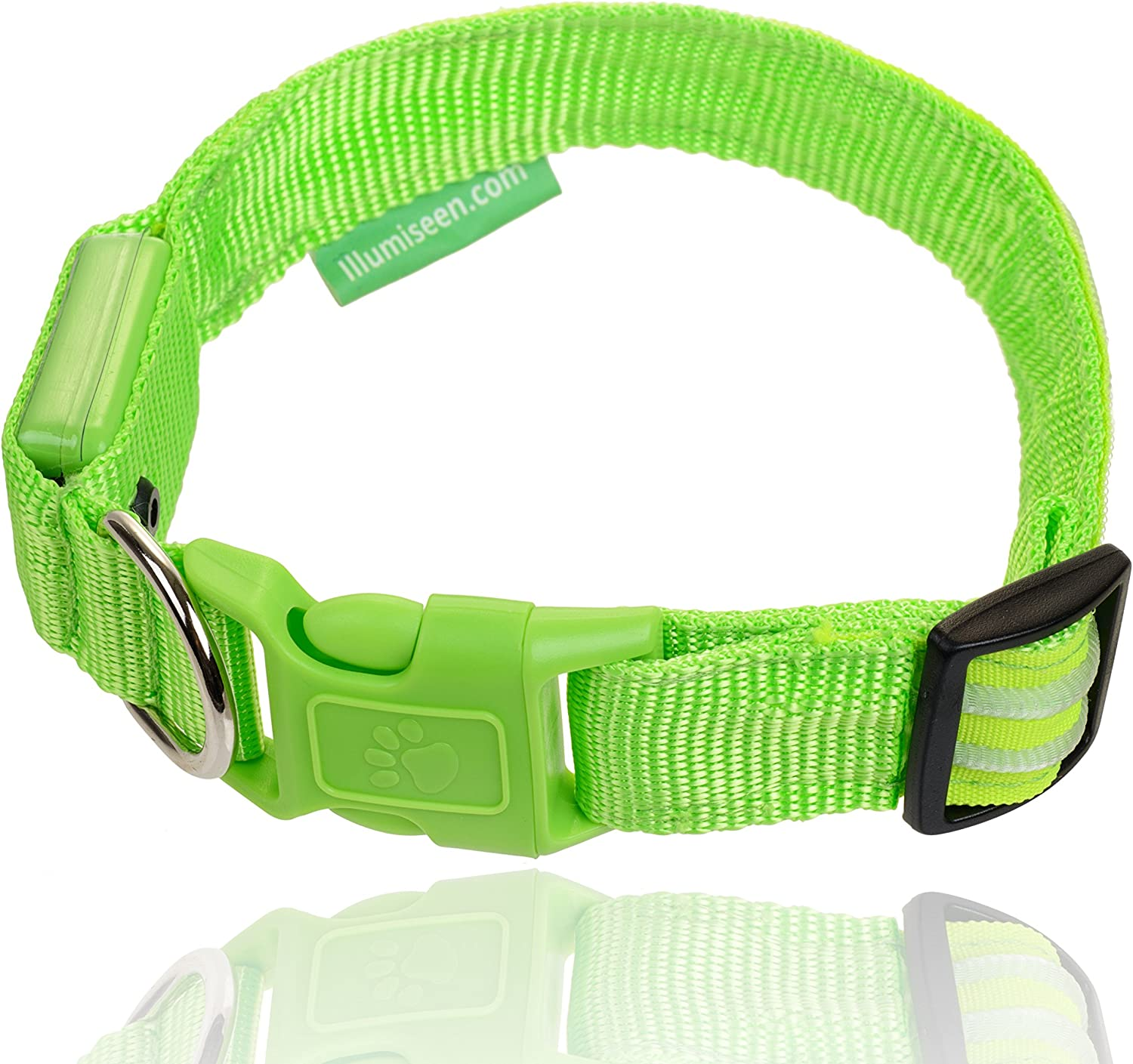 Safe /& Seen Makes Your Dog Visible Available in 6 Colors /& 6 Sizes USB Rechargeable Illumiseen LED Dog Collar