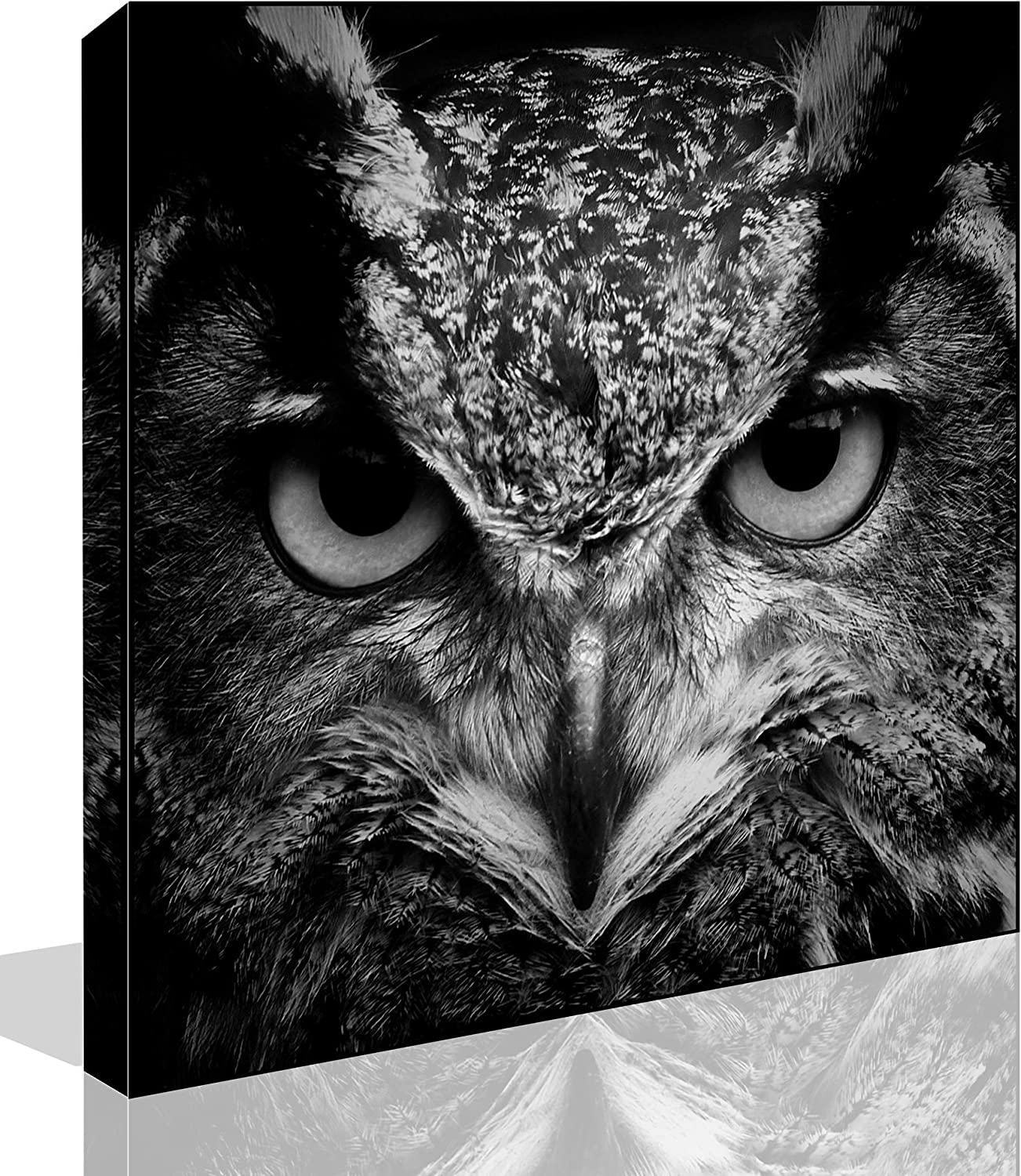 The Melody Art - Modern Giclee Prints All Framed Animal Artwork Black and White Owl Picture Print to Photo Printed Paintings on Canvas Wall Art Decor for Home Office Decorations 16 by 16 inch