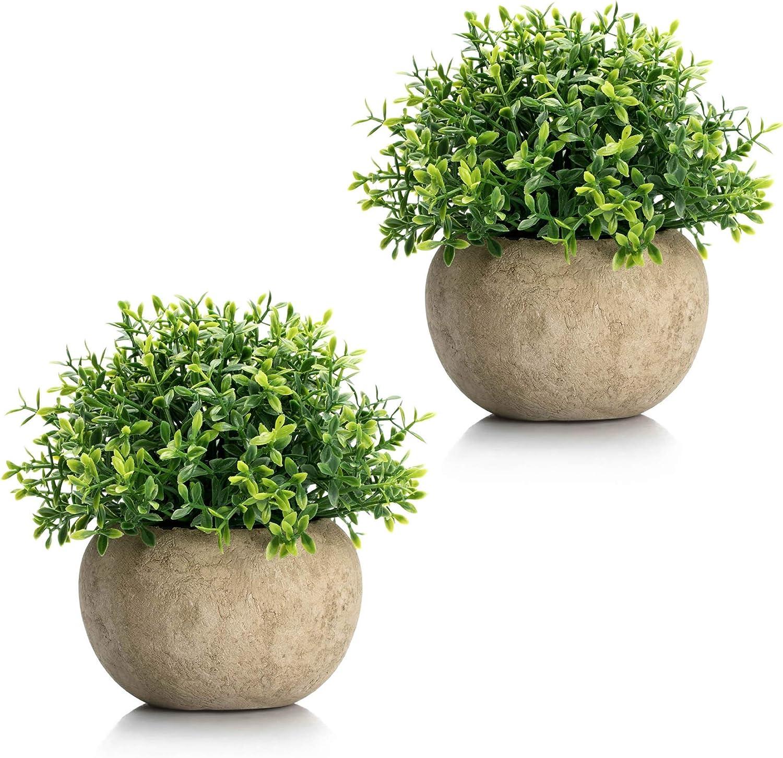 Velener Mini Plastic Artificial Plants Benn Grass in Pot for Home Decor (Set of 2)