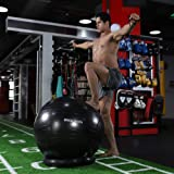 RGGD&RGGL Yoga Ball Chair, Exercise Ball with