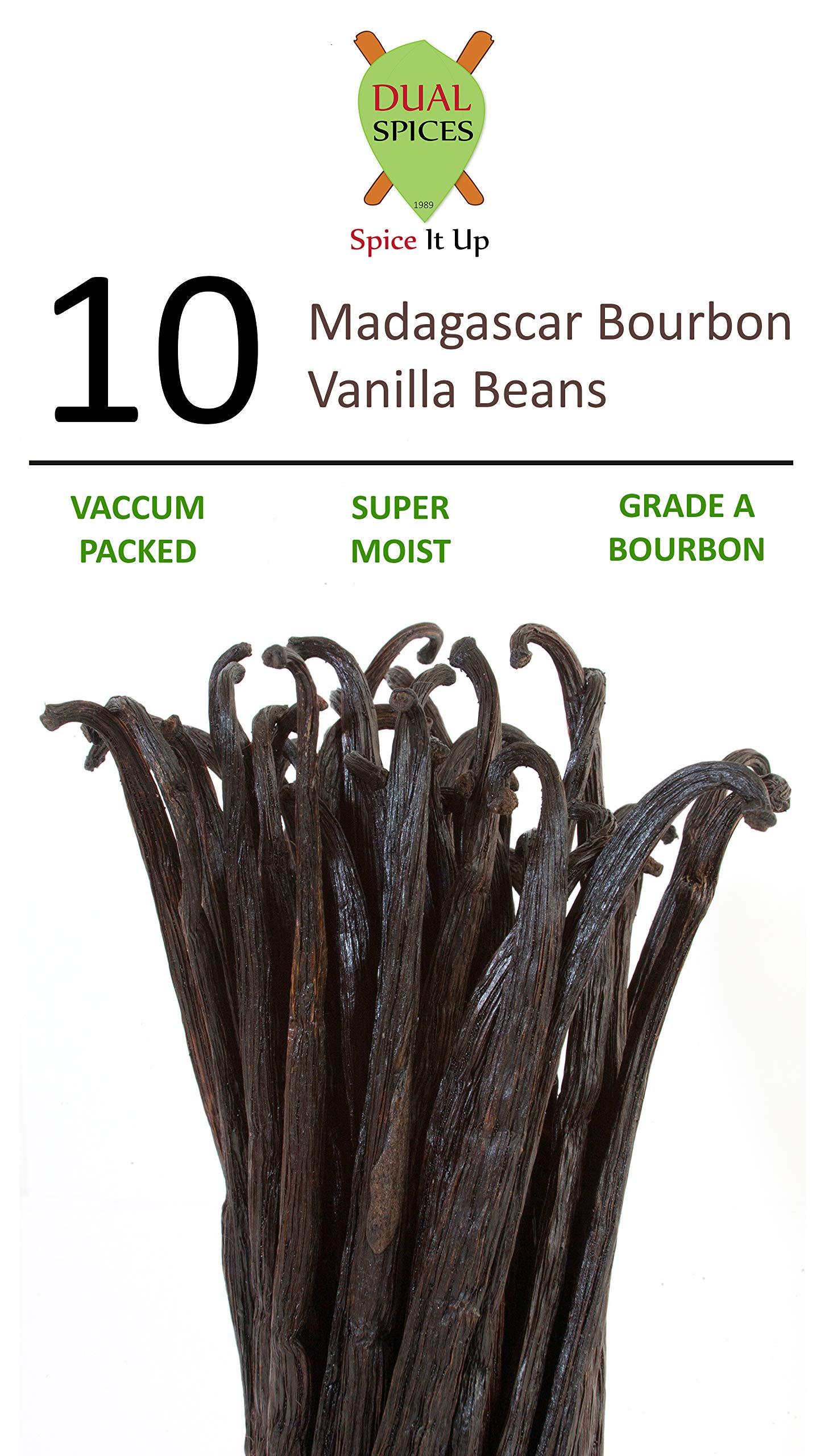 DUALSPICES - 10 - GRADE A Madagascar Bourbon Vanilla Beans (Vanilla Planifolia) SUPER MOIST & FRESH 33% Moisture Content - 5-6 Inches