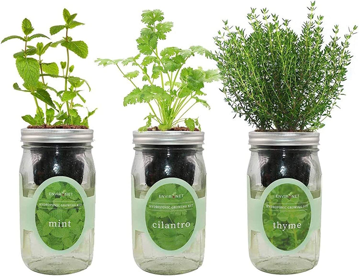 Environet Hydroponic Growing Kit Set, Self-Watering Mason Jar Herb Garden Starter Kit Indoor, Grow Your Own Herbs from Seeds (Mint, Cilantro and Thyme)