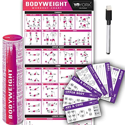 YoYork Exercise Posters for Stretching, Dumbell & Bodyweight Training -  Home Gym & Fitness Workout w Minimal Equipment Needed - Get Full Body  Workout