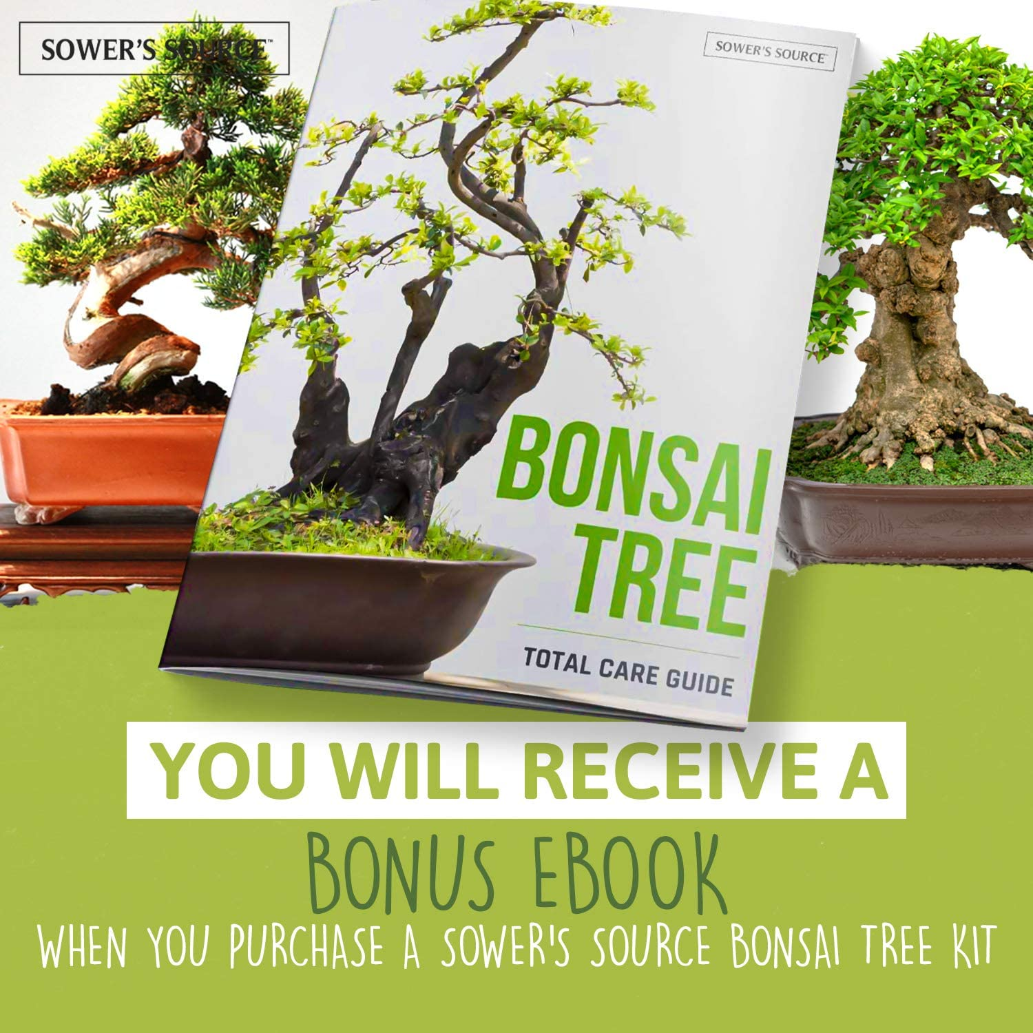 Amazon Com Bonsai Tree Starter Kit Indoor And Outdoor Beginner Seed Kit Soil Mix Biodegradable Planter Pots Plant Markers Growing Guide Grows 5 Unique Trees Garden Outdoor