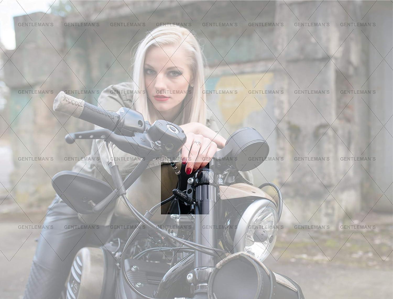 Blinkerhalter vorne I Harley Davidson Sportster LED Blinker Halter Indicator
