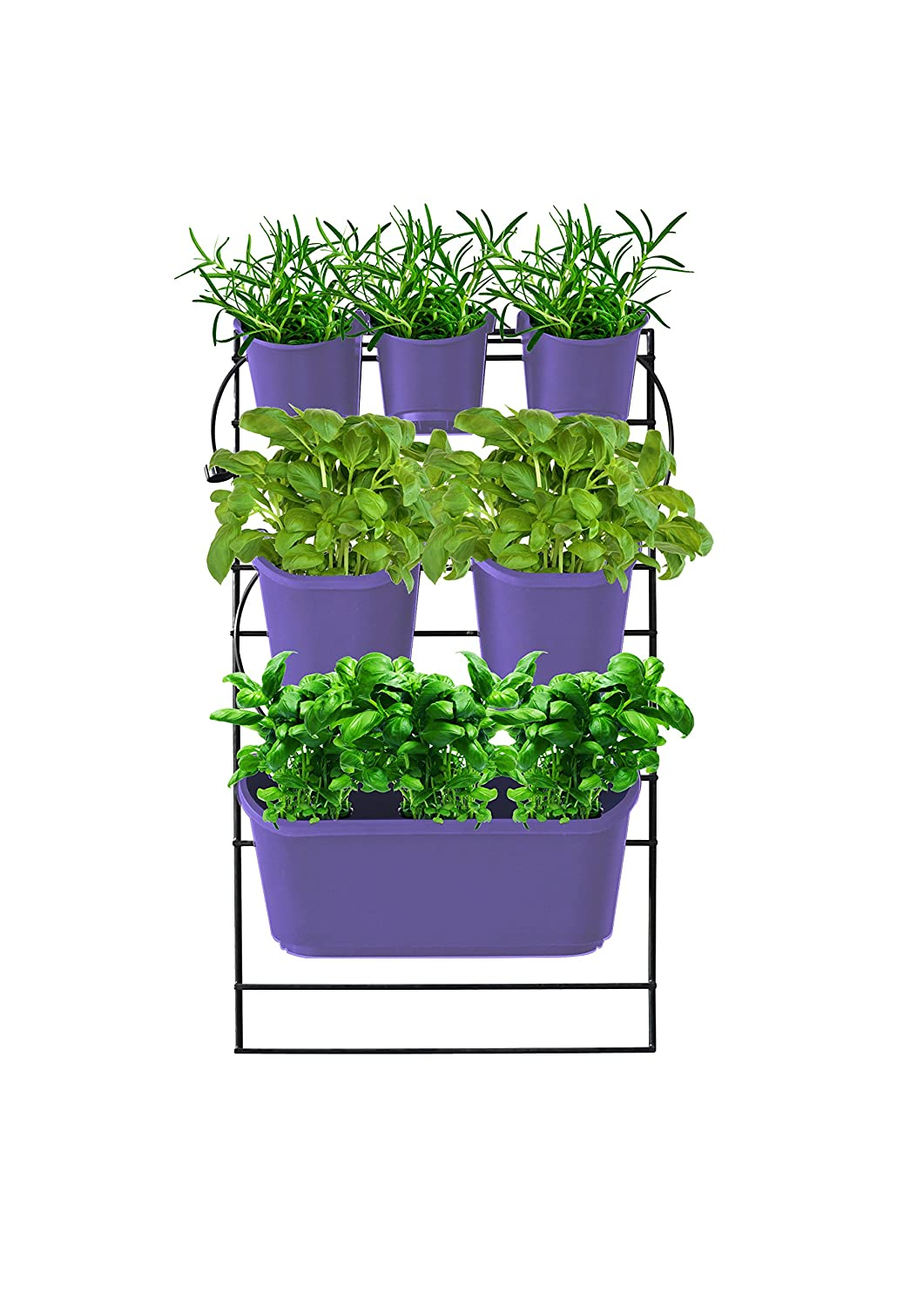 Watex WX058 Mounted Green Wall, Violet Vertical Planter, Purple