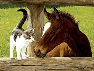 product image for Whiskery Hello - Horse and Cat Puzzle - 500 Piece Jigsaw Puzzle by SunsOut