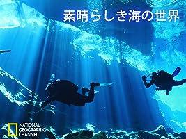 素晴らしき海の世界