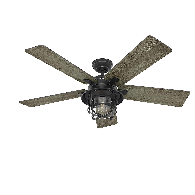 "Hunter Fan 54"" Weathered Zinc Outdoor Ceiling Fan with a Clear"