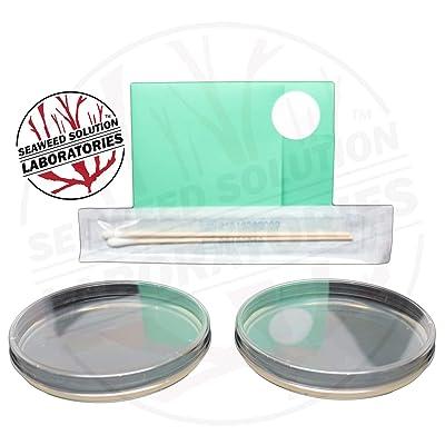 Nutrient Agar Plates - Sterilized - 2, 100 Millimeter: Toys & Games