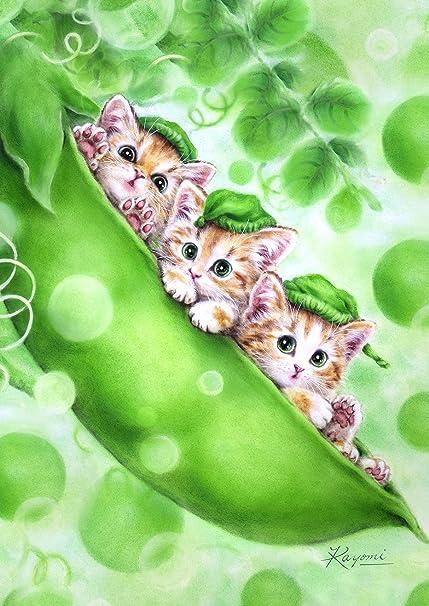 Amazon.com: toland home garden gatitos en una vaina 28 x 40 ...