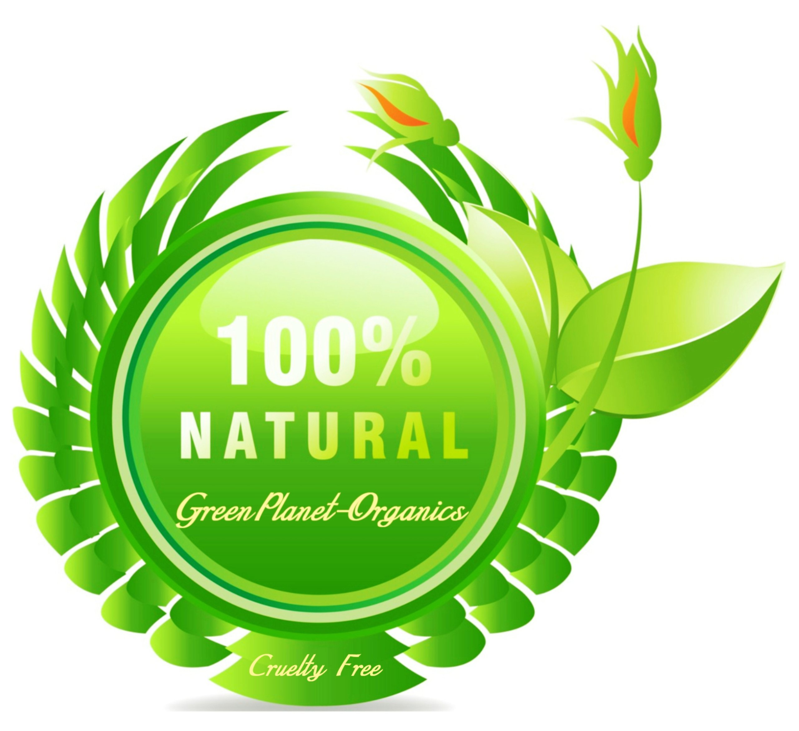 2 LBS Natural & Halal Tukh Malanga/Sabza/Sabja Seeds (Make Delicious Rooh Afza Drinks/Falooda Ice Creams, Tokhme Sharbats, Basil Drinks, Basil Jellos/Puddings)