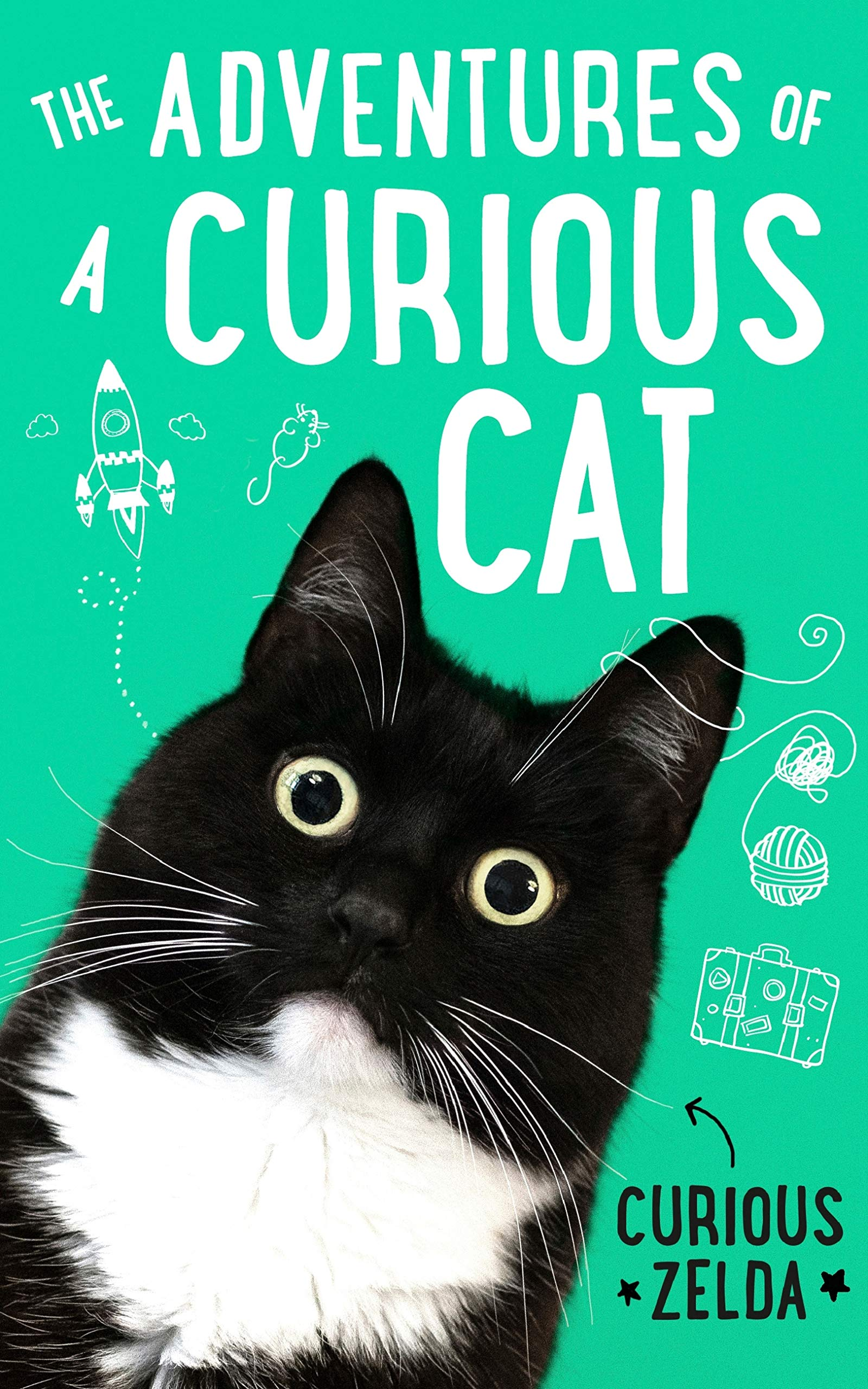 The Adventures of a Curious Cat: wit and wisdom from Curious Zelda purrfect for cats and their humans (English Edition)