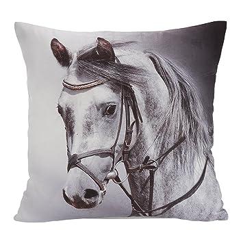 avanzza almohada/cojín con relleno 40 x 40 cm, con diseño de ...