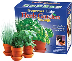 Chia Gourmet Herb Garden Indoor Garden & Planter