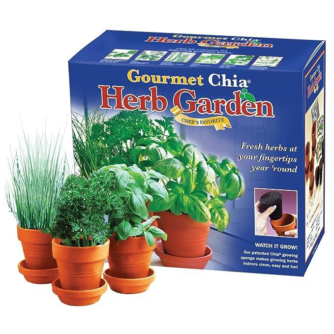 Amazon.com : Chia Gourmet Herb Garden - Indoor Garden & Planter ...