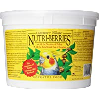 LAFEBER'S Classic Nutri-Berries Bird Food and Treat