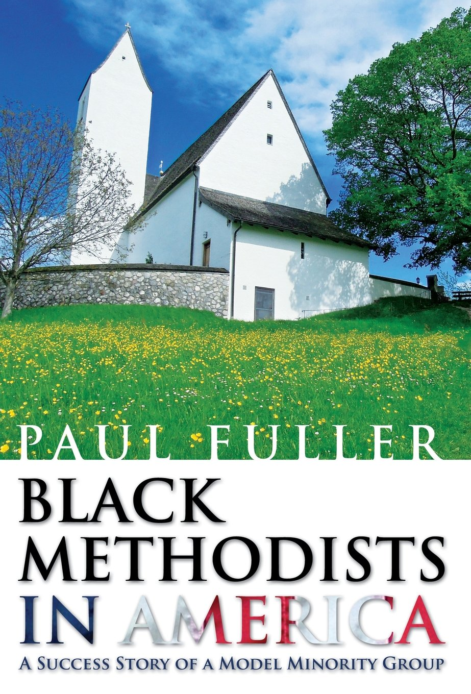 Black Methodists in America: A Success Story of a Model Minority Group PDF