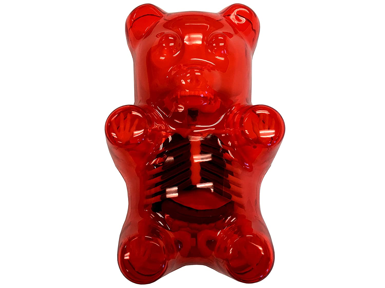 Amazon Red Gummi Bear Anatomy Model Toys Games