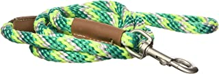 """product image for Mendota Snap Leash, Ivy, 1/2"""" by 6'"""