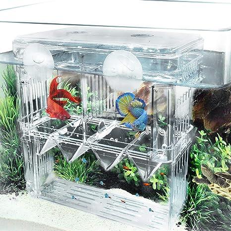 Aquarium Isolation Tank