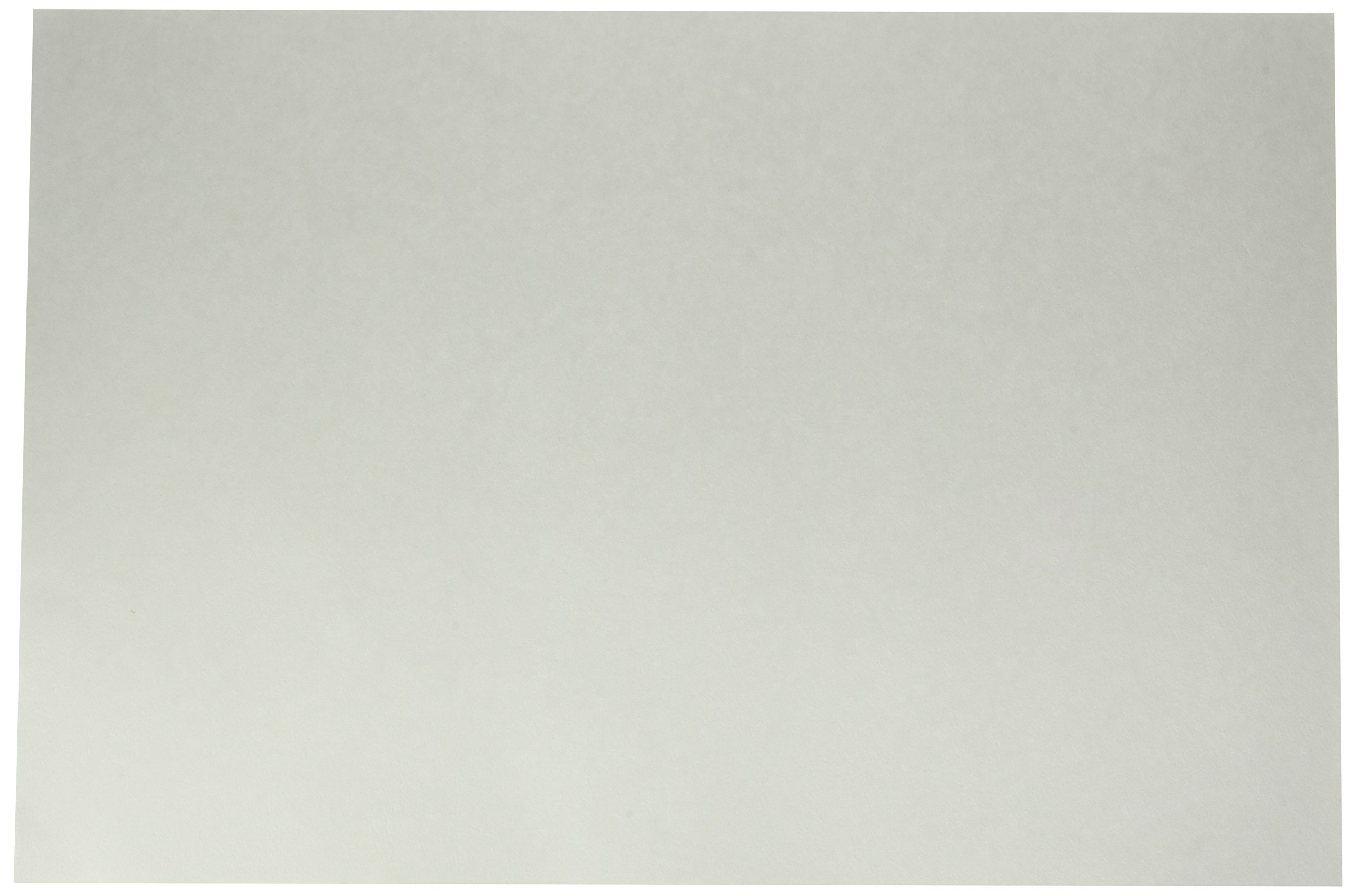 School Smart 85484 White Tagboard - Medium Weight - 12 x 18 inches - Pack of 100 Sheets