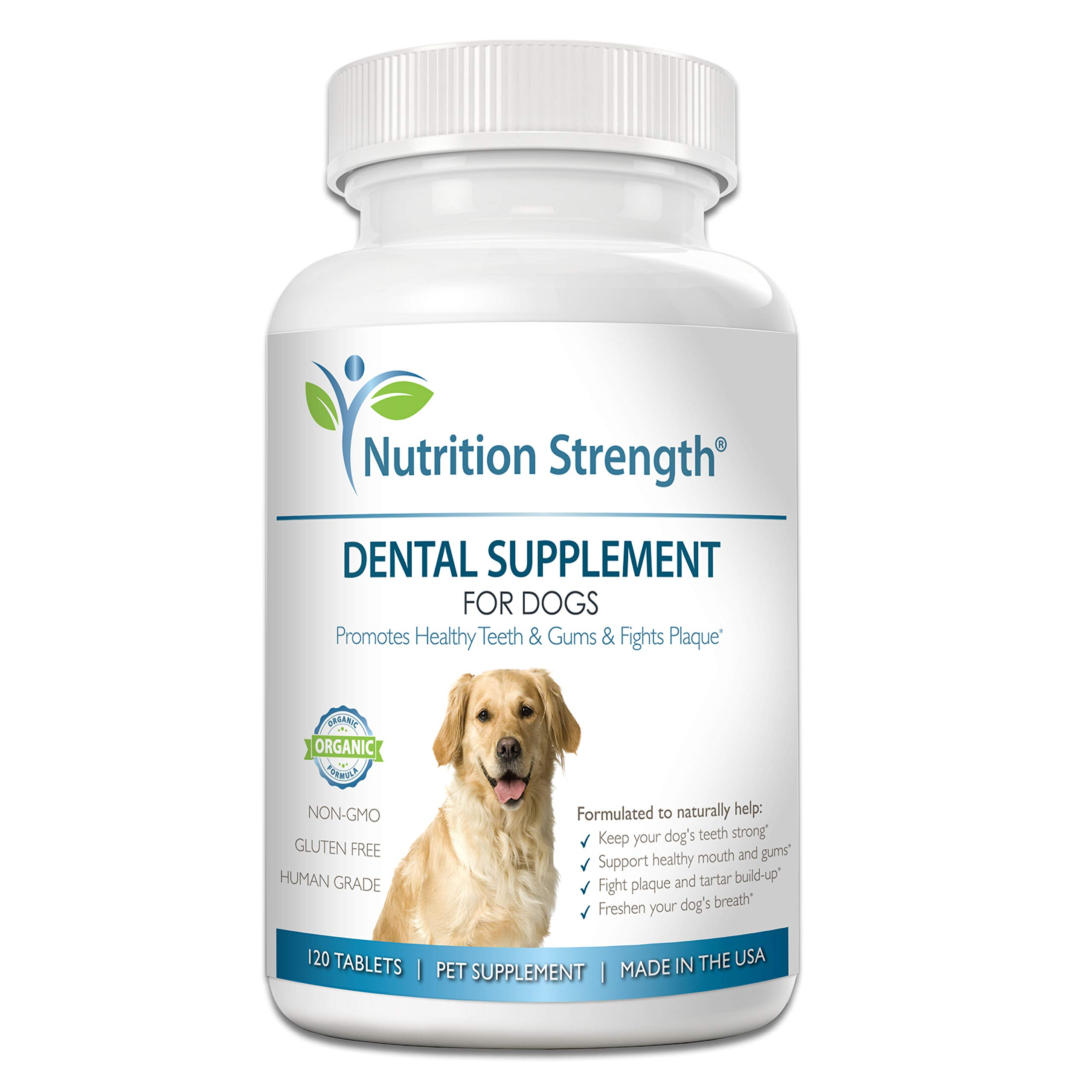 Nutrition Strength Dental Care for Dogs, Daily Supplement for Healthy Dog Gums and Teeth with Organic Kelp, Strawberry Leaf, Pumpkin Seed for Dog Mouth and Teeth Cleaning, 120 Chewable Tablets by Nutrition Strength