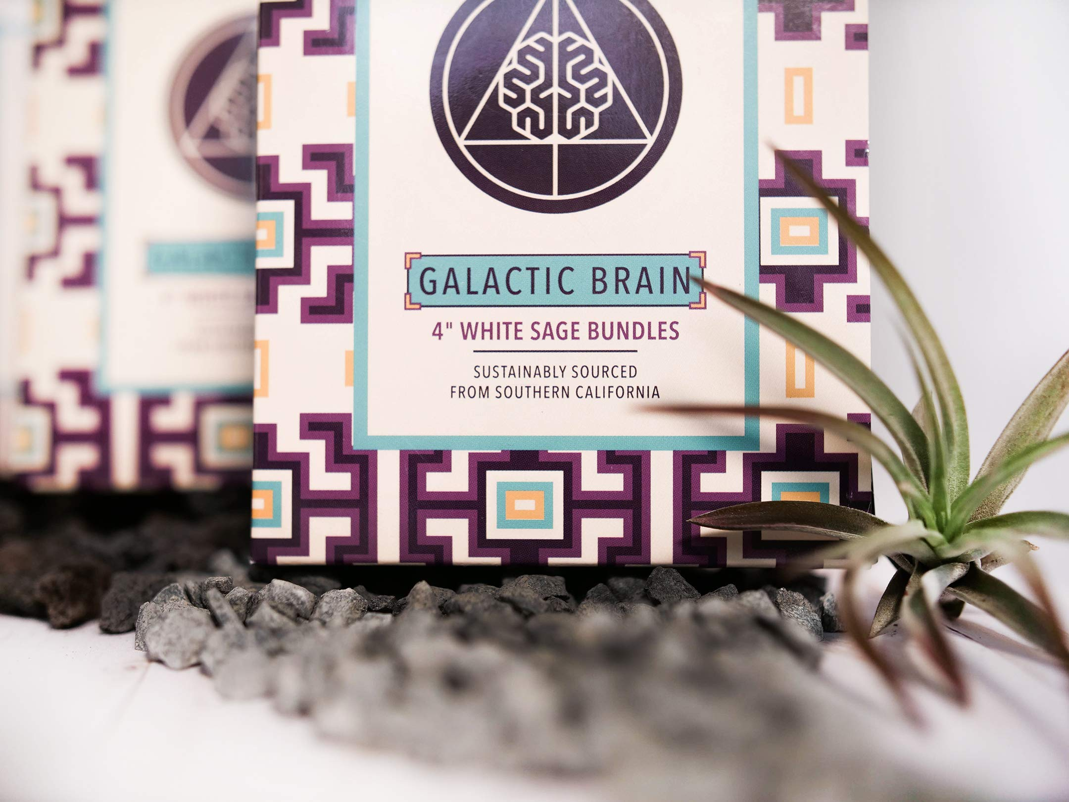 Galactic Brain 4 Inch White Sage Bundles | 3 White Sage Smudge Sticks with 2 Sample Palo Santo Sticks and 1 Selenite Crystal in Gift Set for Cleansing Your Home by Galactic Brain (Image #6)