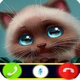 Call From Angeel Cat