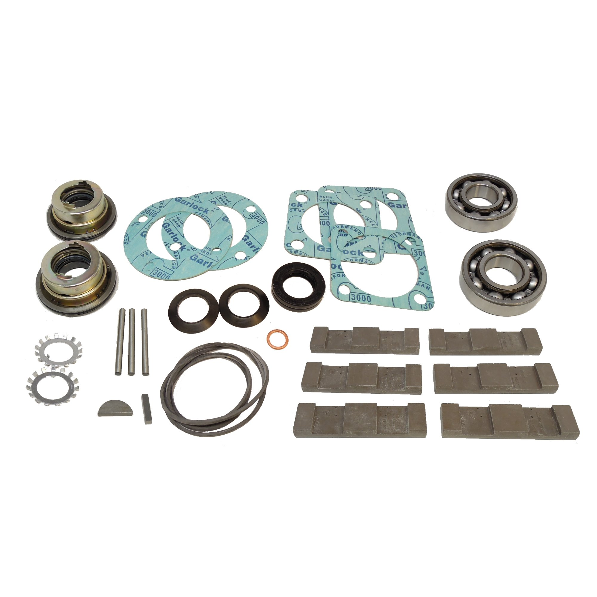 Blackmer 898951 Stainless Steel and Synthetic Main Kit TXD2.5A