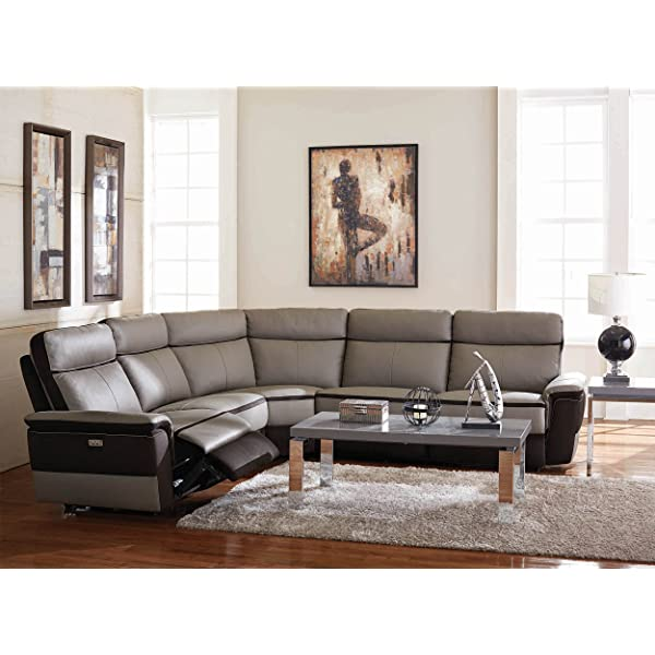 Homelegance Laertes Two-Tone Power Reclining Sectional Sofa Top Grain Leather Fabric Match, Light Grey