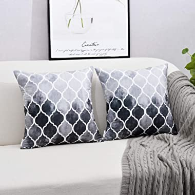 NATUS WEAVER Pack of 2 Cozy Throw Pillow Cases Covers Couch Bed Sofa Manual Hand Painted Colorful Geometric Trellis Chain Print 18 X 18 Inches Main Gray Grey Carbon